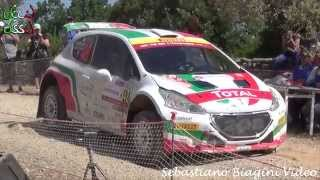 Rally Sardegna 2015 - Paolo Andreucci / Anna Andreussi Tribute