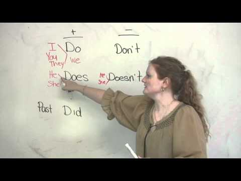 Basic English Grammar  Do, Does, Did, Dont, Doesnt, Didnt