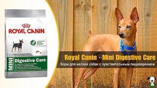 Сухой корм для собак мелких размеров с чувствительным пищеварением · Royal Canin Mini Digestive Care
