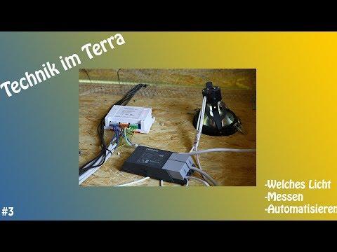 Das Bartagamen Terrarium; Beleuchtung Und Technik; Video #003