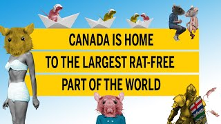 Canada is home to the largest rat-free part of the world
