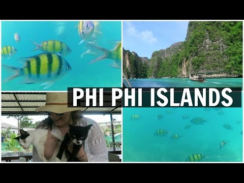 SNORKELING AND EXPLORING THE PHI PHI ISLANDS IN THAILAND