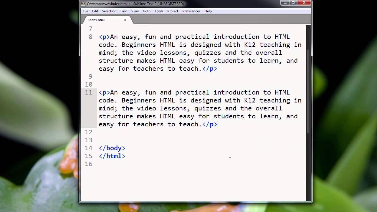 Ch2 Lesson 3 - Html Tag Basics  Part 2