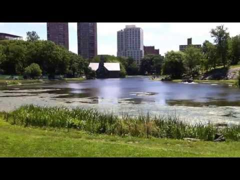 Harlem Meer in Central Park - Interesting Places To See in New York City