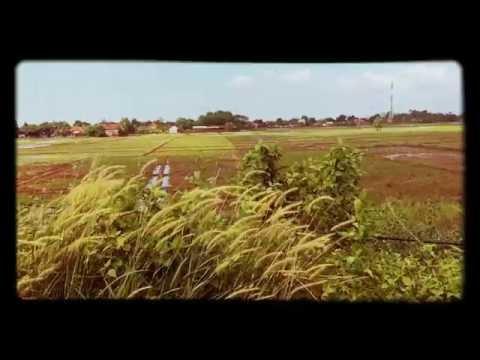 Rumput yang bergoyang