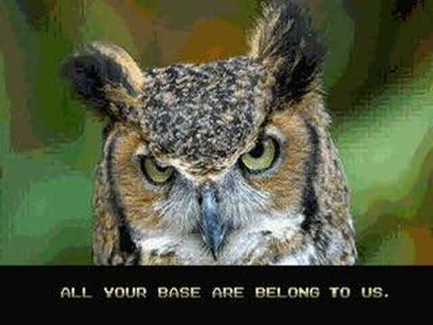 ALL YOUR BASE ARE BELONG TO O RLY?