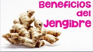 Beneficios y propiedades del té de jengibre | INNATIA.COM