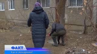Жители одного из домов по улице Жаманкулова жалуются на нечеловеческие условия проживания