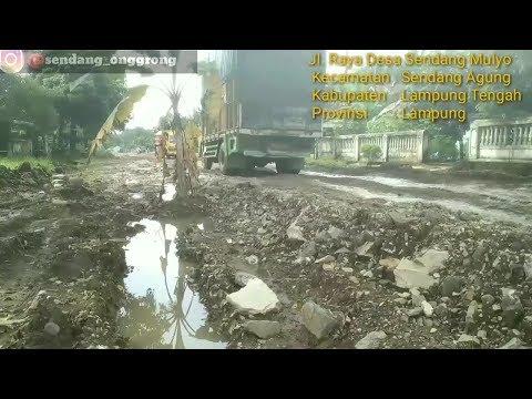 Jalan Sendang Rusak Parah (Lampung Tengah)