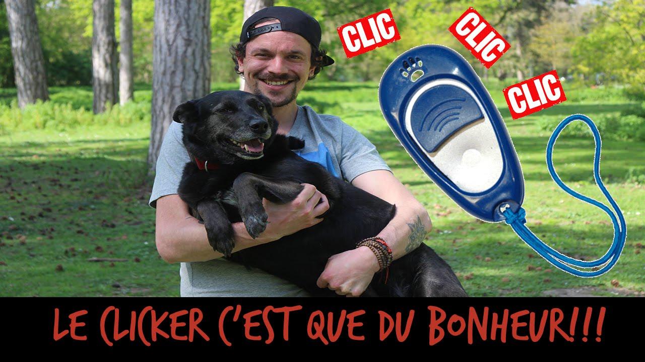 LE CLICKER, C'EST QUE DU BONHEUR ! - TOOPET - YouTube