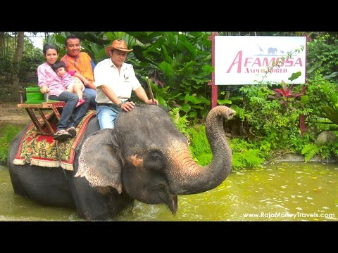 A'famosa animal World Safari alor gajah, Malacca, Malaysia Holidays