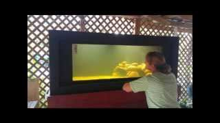 225 Galllon Plywood Fish Tank Build