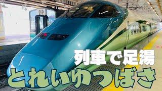【鉄道旅ゆっくり実況】E3系 特急とれいゆつばさ【週末パスの旅③】