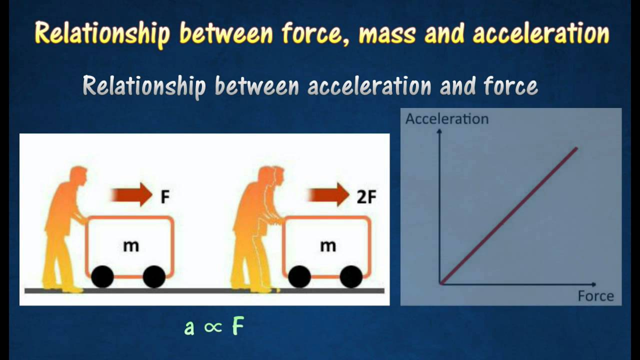 experiment on the relationship between accelaretion force and mass