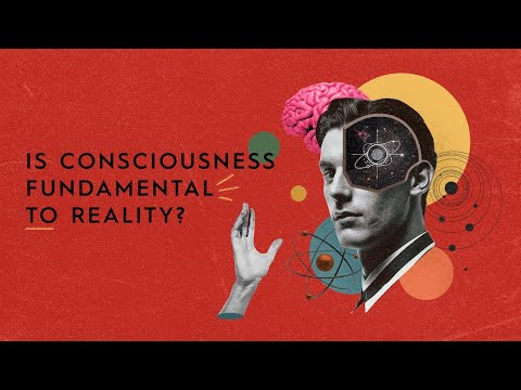 Philip Goff on why consciousness may be fundamental to reality