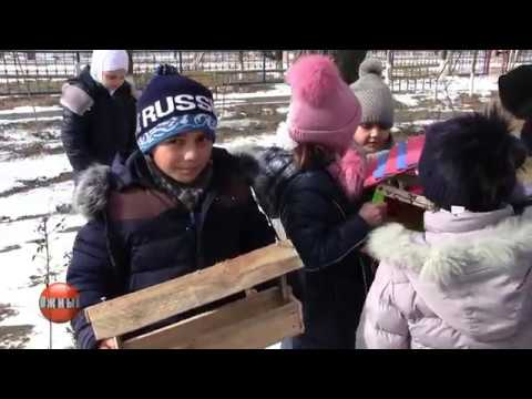 Экологическая акция Покормите птиц зимой!
