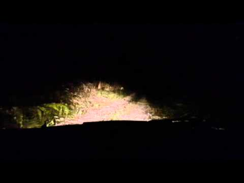 Driving in Bluefields, Jamaica