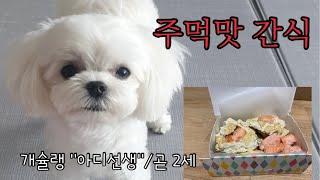 강아지 간식만들기/두부연어간식/쉬운 수제간식