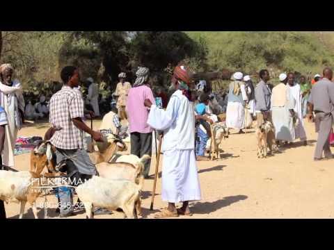 Spiekerman Travel - Eritrea