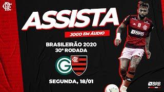 Goiás x Flamengo AO VIVO na Fla TV   Brasileiro 2020