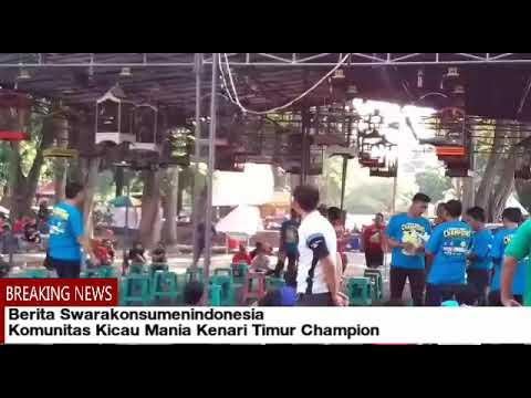 Download Lagu Komunitas Kicau Mania Kenari Timur Champion
