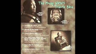 Muddy Waters Tribute Band- Clouds In My Heart