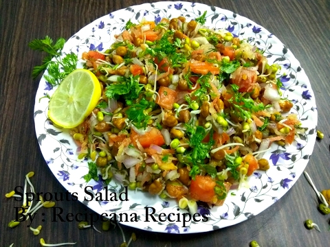 Sprouts Salad | How to make Sprouts Salad at Home |  Recipeana