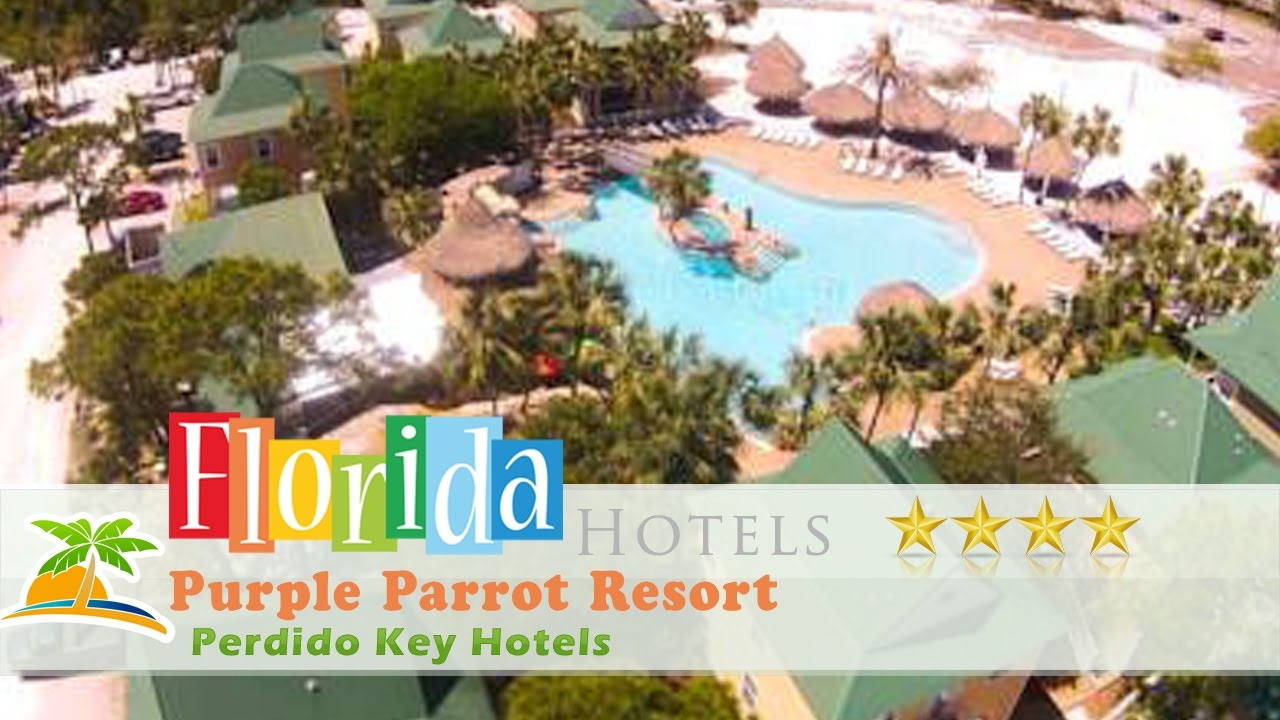 Purple Parrot Resort Perdido Key Hotels Florida