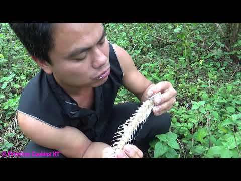 Primitive technology - Primitive skills catch big fish and cooking fish in bamboo - Eating delicious