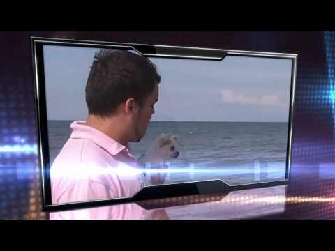 Daniel Kandi DJ Mag top 100 2011 Video