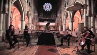 Anchorsong - Flamingos (String Quartet Ver.)