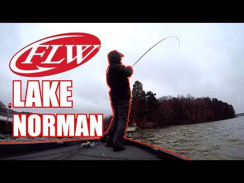 BASS TOURNAMENT In A BLIZZARD | Lake Norman FLW BFL