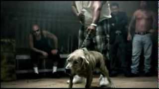 Repeat youtube video pelea de perro con hombre