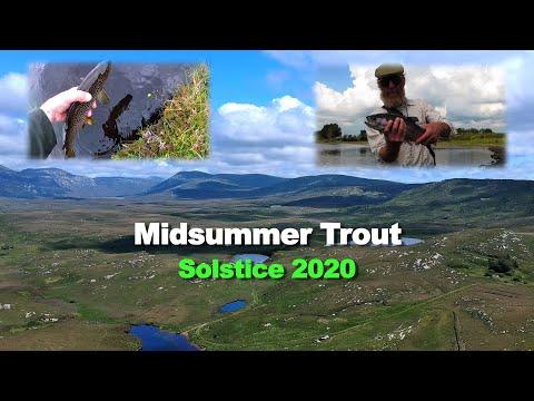 Midsummer Trout