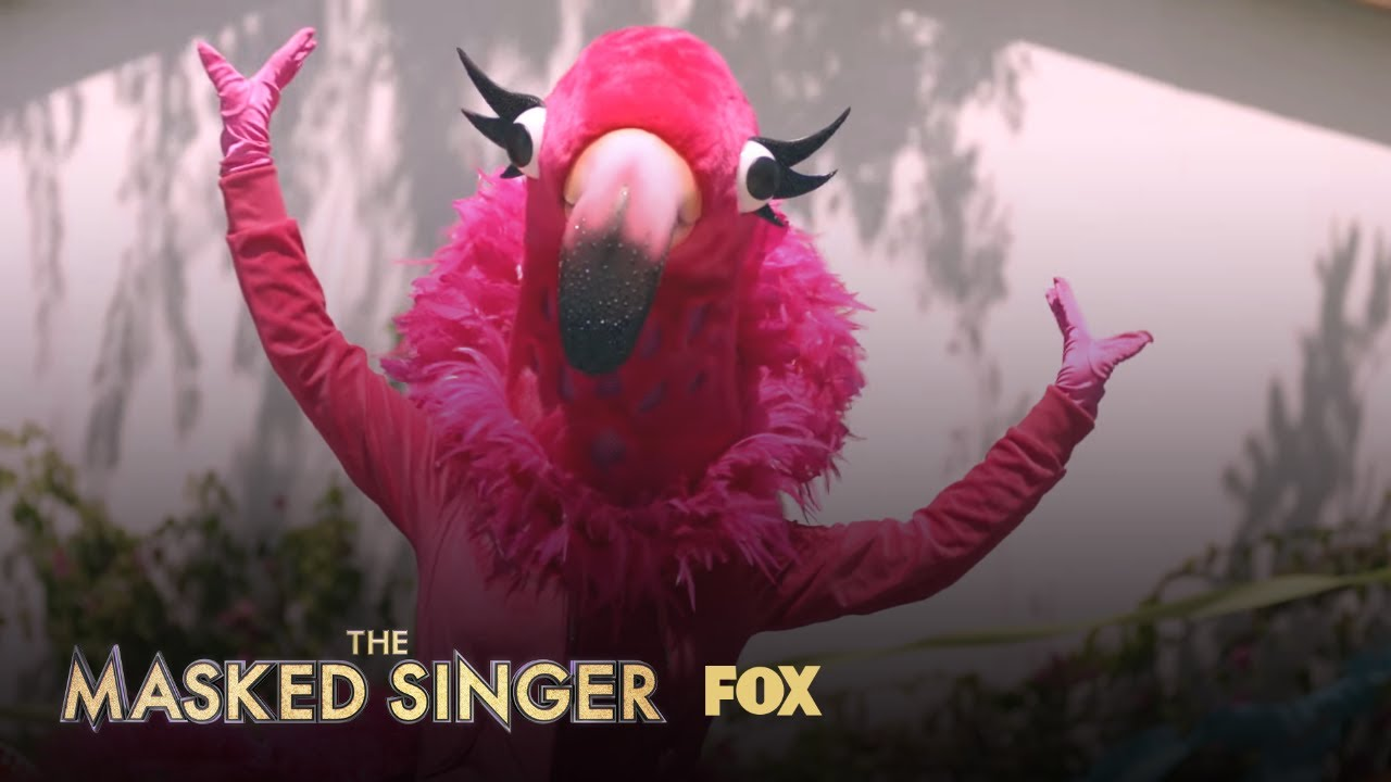 who is flamingo on the masked singer