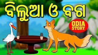 ବିଲୁଆ ଓ ବଗ - The Fox and The Stork in Odia   Odia Story   Fairy Tales in Odia   Koo Koo TV
