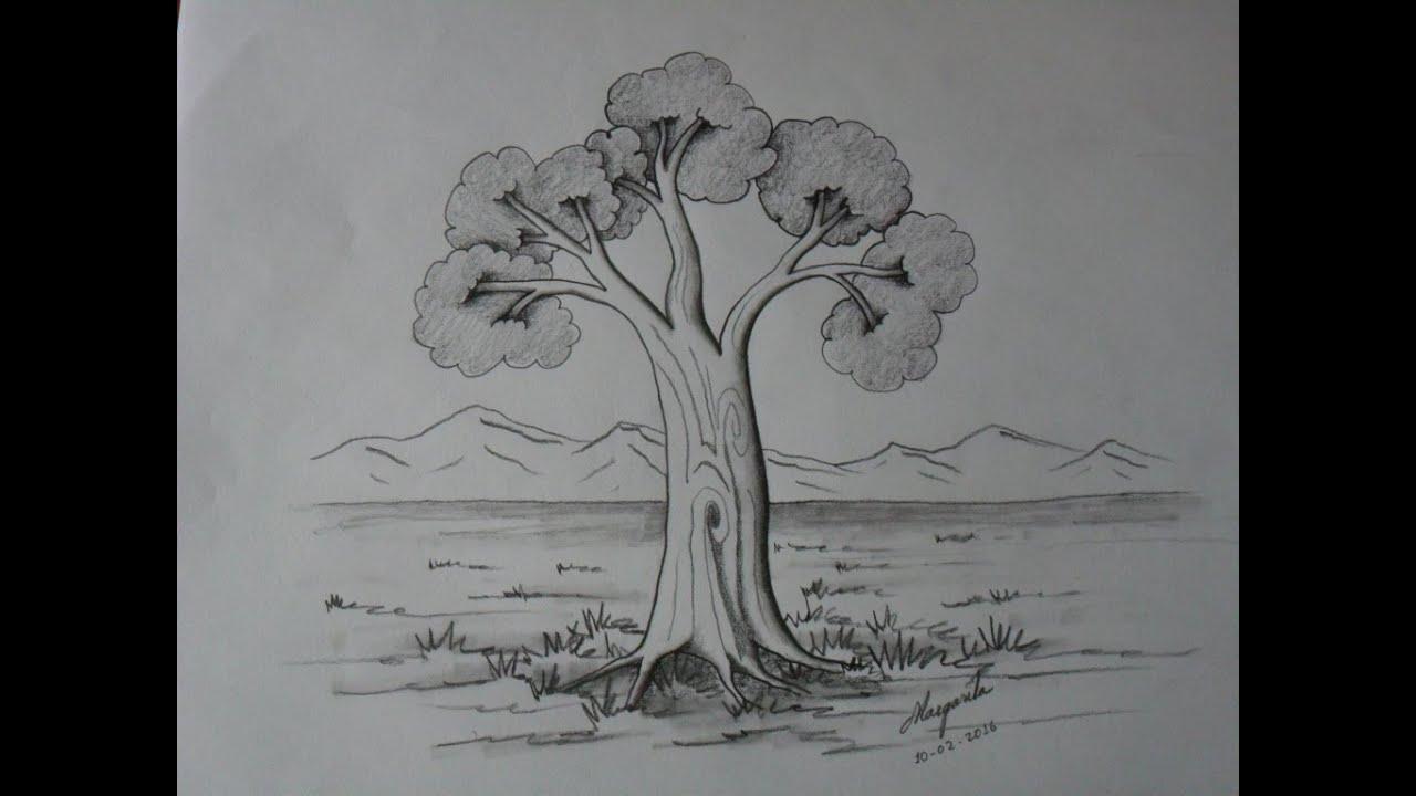 Como Dibujar Un Árbol En Caricatura. Paso A Paso. Muy