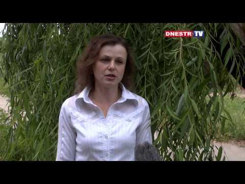 Ирина ЩЕРБИНИНА С этим надо бороться