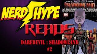 Daredevil Shadowland #2 - NerdHype Reads Ep. 2 !