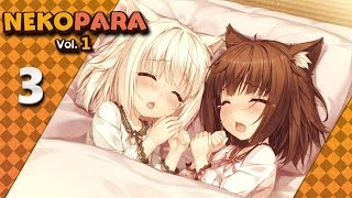Nekopara Vol.1 (PC, Blind, Let's Play) | Chocola & Vanilla's Feelings | Part 3