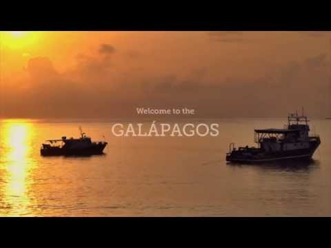 Experience the Galapagos with GAdventures