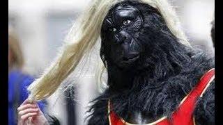Прикольные приколы человека в костюме гориллы