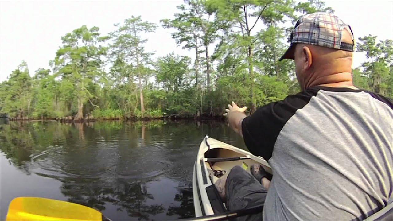 Kayak fly fishing upper bayou lacombe youtube for Kayak fishing louisiana