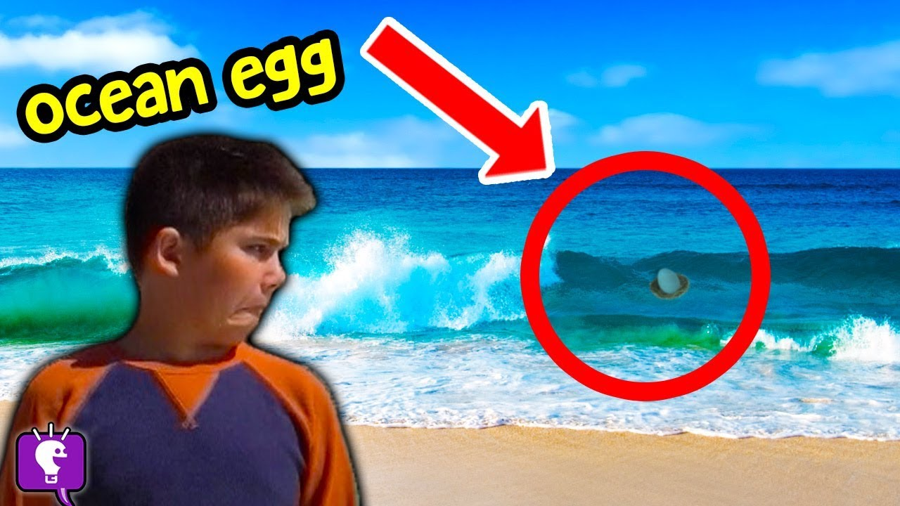 ABANDONED BEACH EGGS in Ocean! D.Gold Leaves Mystery Clues to HobbyKids