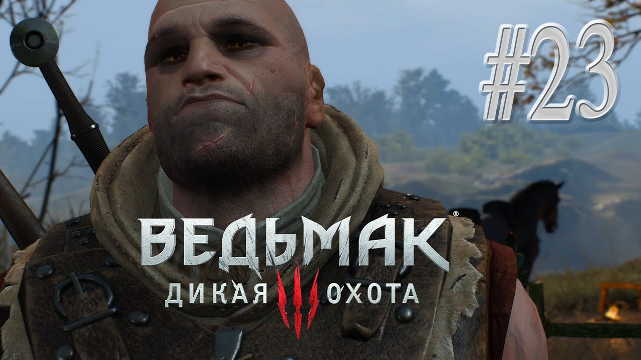 the witcher 3 старый знакомый
