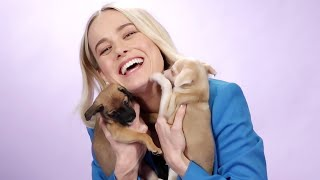 Brie Larson Plays With Puppies While Answering Fan Questions