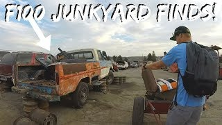 Finding Parts For My F100 In a Junkyard!