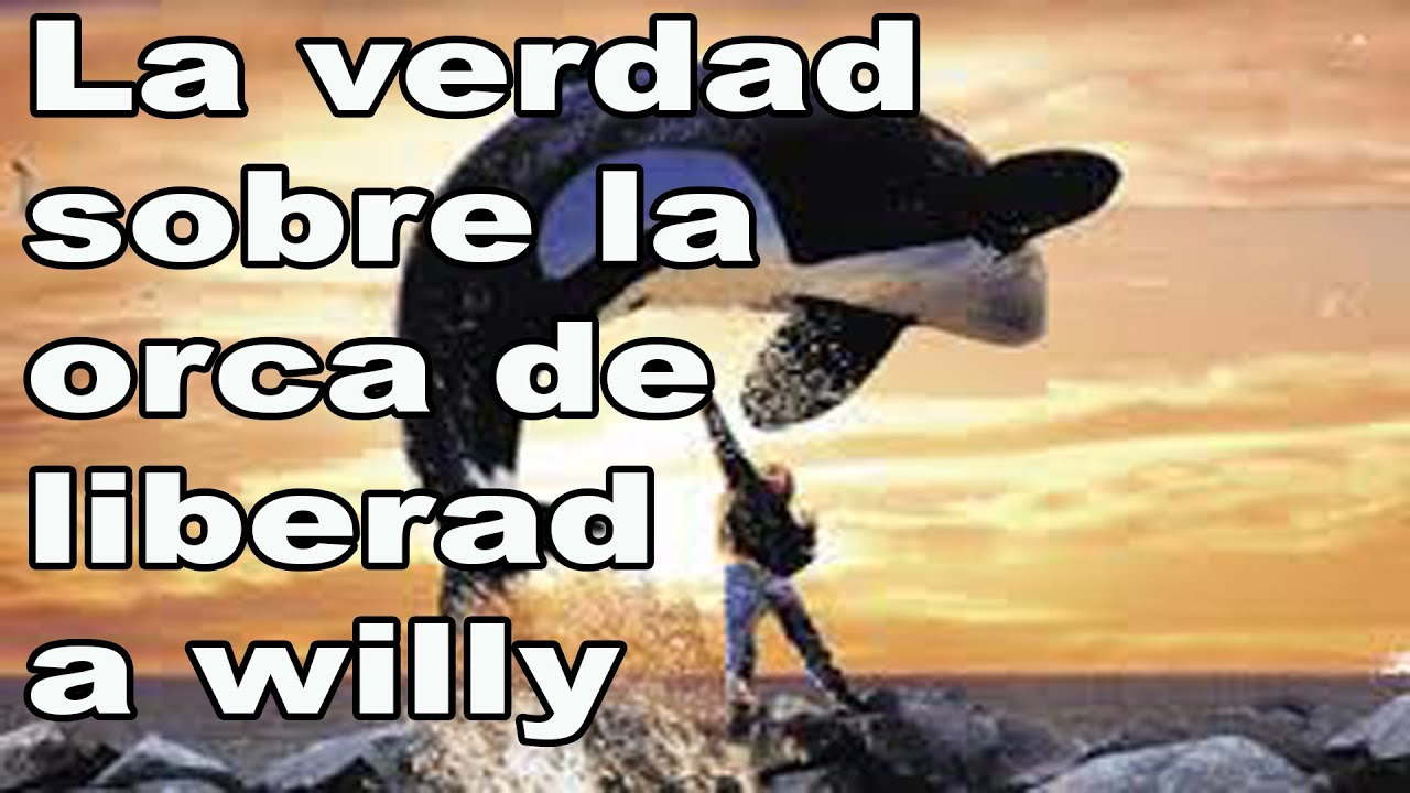 Keiko Orca Free Willy