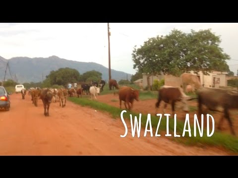 Swaziland: driving through the last absolute African Kingdom