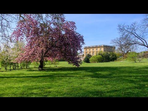 🎥 🔴 Live #2 - Alain Baraton - les jardiniers de Trianon